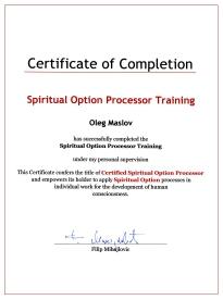 Сертификат сертифицированного процессора по системе Духовный Выбор от Филиппа Мизайловича-2008